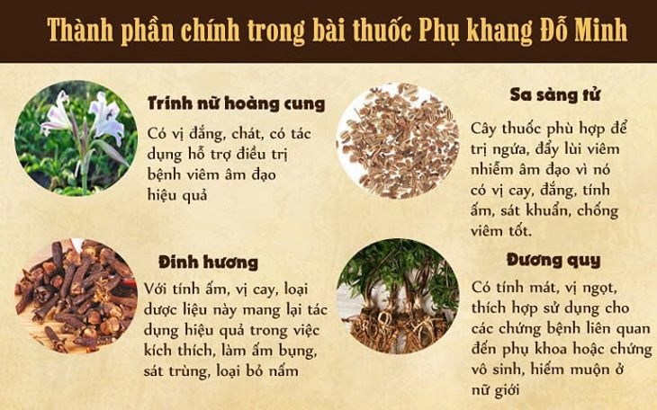 Thành phần chính trong bài thuốc Phụ Khang Đỗ Minh