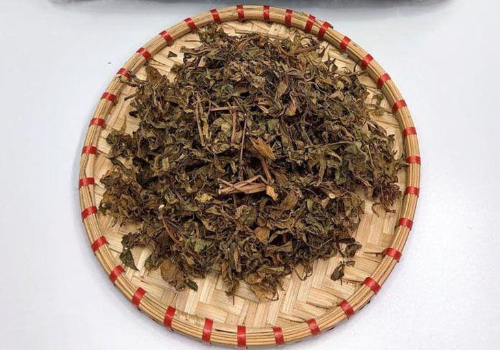 Lá nam dương sâm khô là thành phần chính của bài thuốc