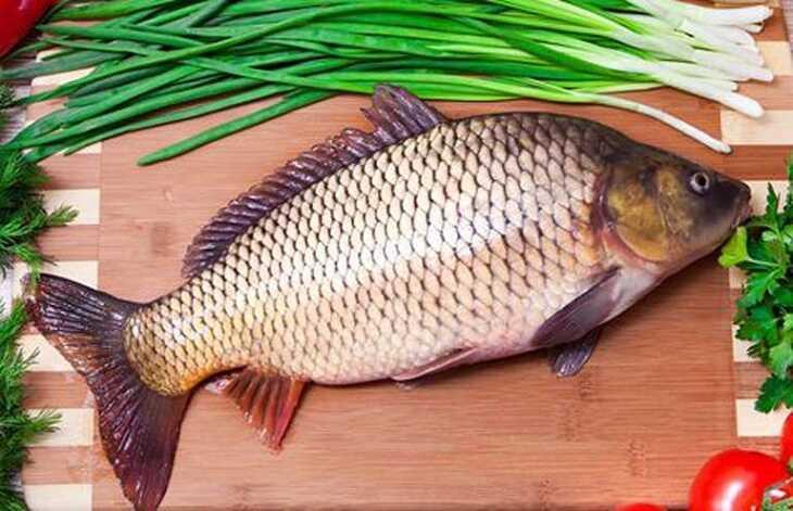 Cá chép cải thiện sinh lý nam giới