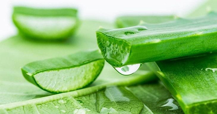Nha đam giúp cấp ẩm và làm mềm da rất hiệu quả
