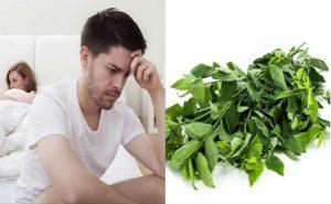 Cách chữa yếu sinh lý bằng rau ngót ít người biết