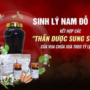 Dược tửu Hồi Xuân Phục Dương Thang giải pháp hoàn hảo cho quý ông Việt