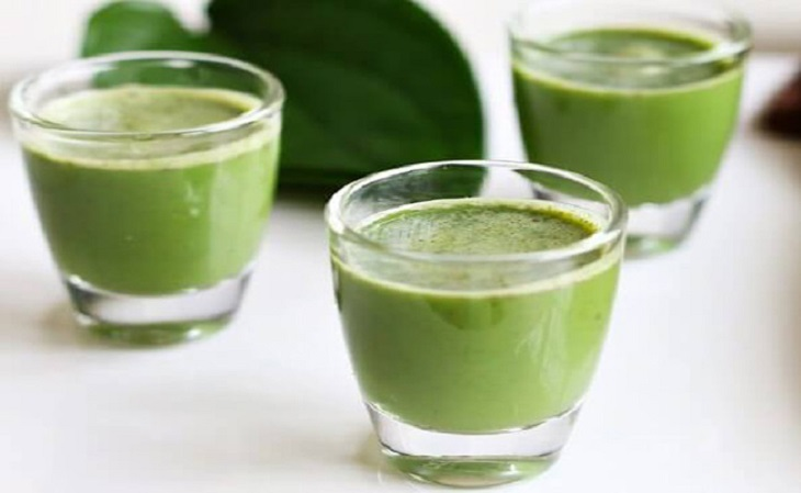 Uống nước lá trầu không mỗi ngày sẽ giúp bạn đẩy lùi những triệu chứng bệnh khó chịu