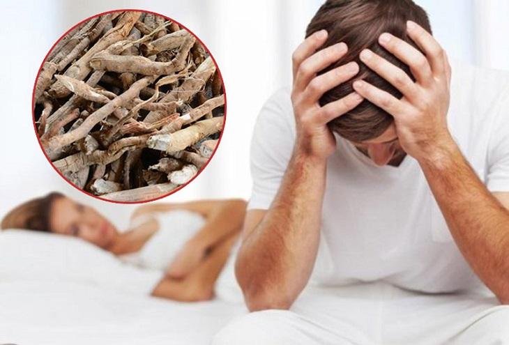 Rễ cau là một cách chữa trị rối loạn cương dương tốt nhất hiện nay