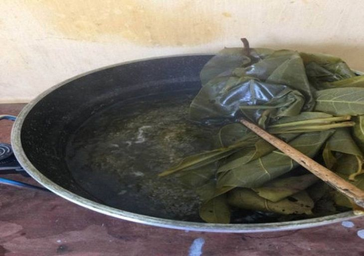Nấu nước lá bàng tắm để trị chàm