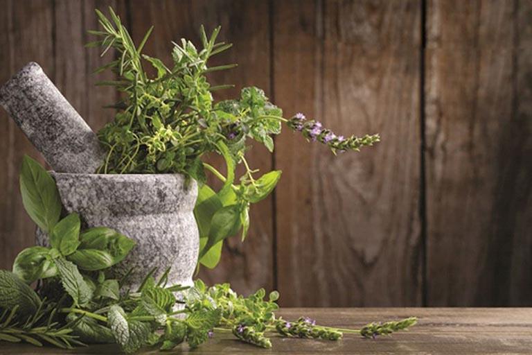 Chữa viêm đại tràng co thắt bằng thảo dược lành tính có sẵn trong tự nhiên