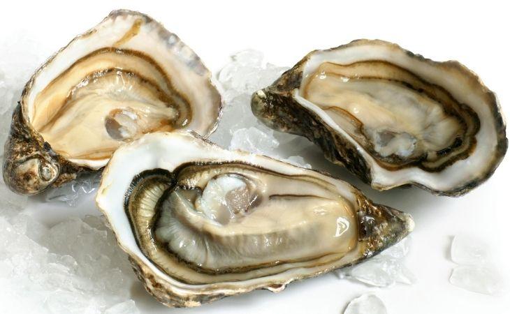 Tinh bột hàu biển chính là thành phần quan trọng nhất