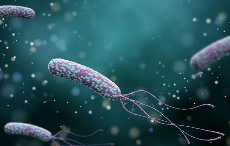 Triệu chứng nhiễm vi khuẩn HP trong dạ dày