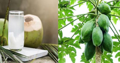 Kết hợp nước dừa và đu đủ xanh tạp thành bài thuốc trị gout