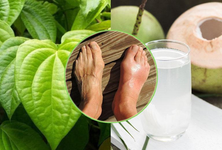 Sử dụng bài thuốc từ lá trầu không và nước dừa để chữa gout