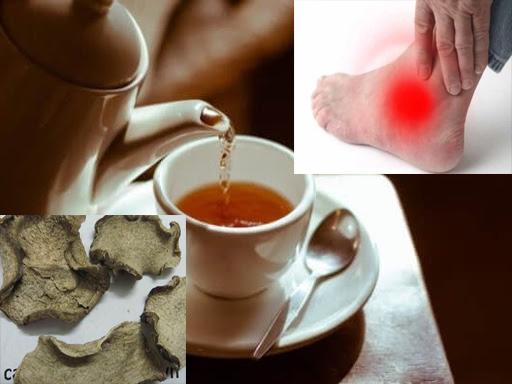 Trà củ ráy chữa bệnh gout