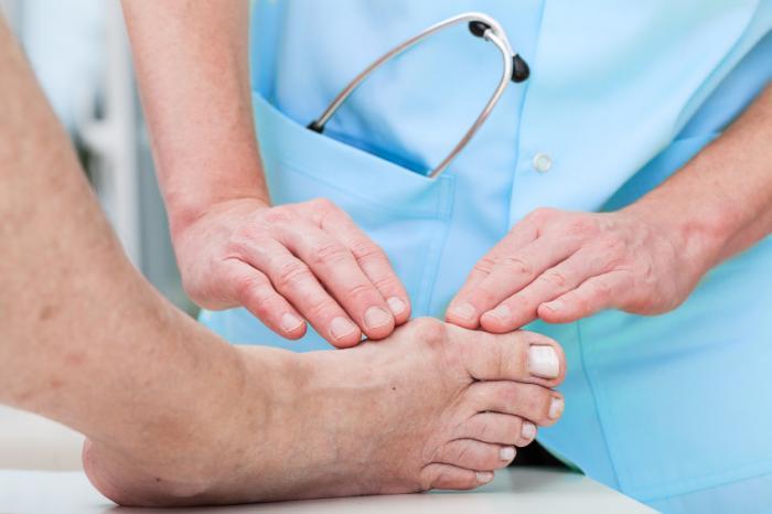 Bệnh nhân nên thăm khám định kỳ trong quá trình sử dụng củ ráy chữa bệnh gout