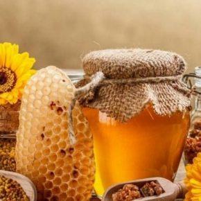 Sỏi thận có uống được mật ong không