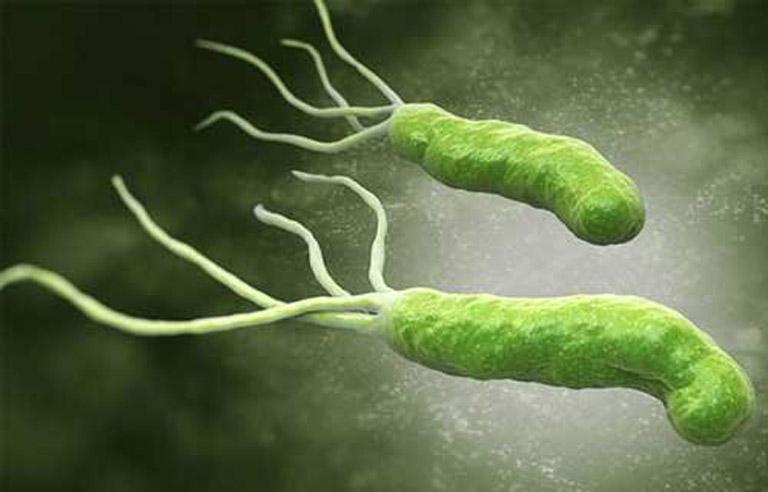 Vi khuẩn Hp là tác nhân gây ra các bệnh lý về dạ dày thường gặp