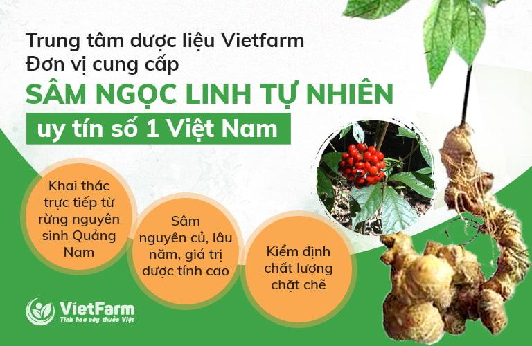 Sâm Ngọc Linh tại Vietfarm được đánh giá rất tốt hiện nay