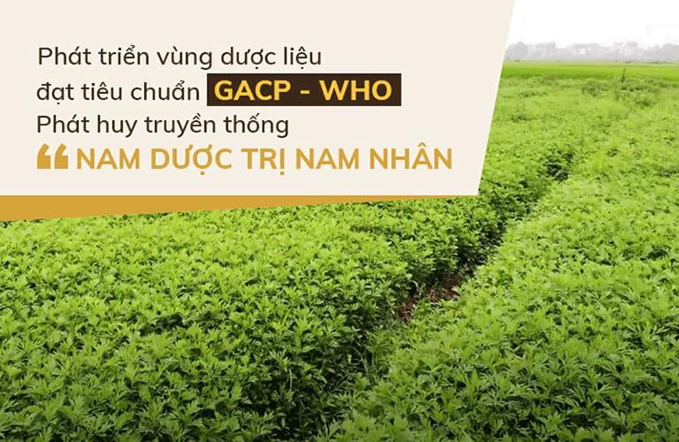 Vườn dược liệu sạch Đỗ Minh Đường