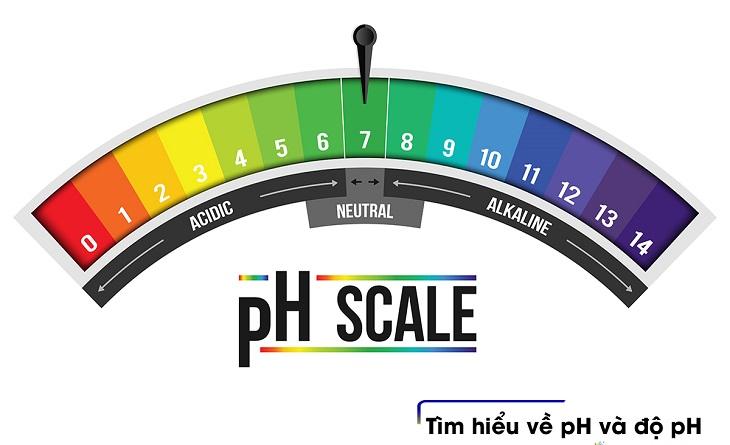 Độ pH của nước máy là chỉ số gì?
