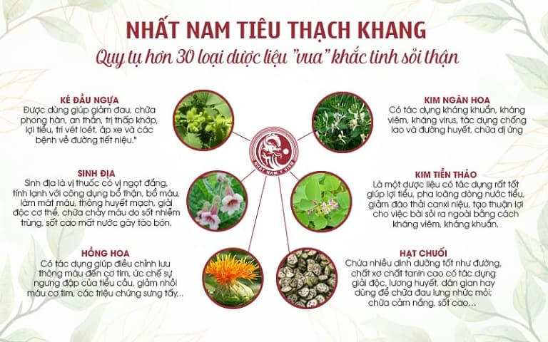 Nhất Nam Tiêu Thạch Khang trị sỏi thận là bài thuốc an toàn nhờ nguồn dược liệu sạch, thành phần dược tính quý hiếm