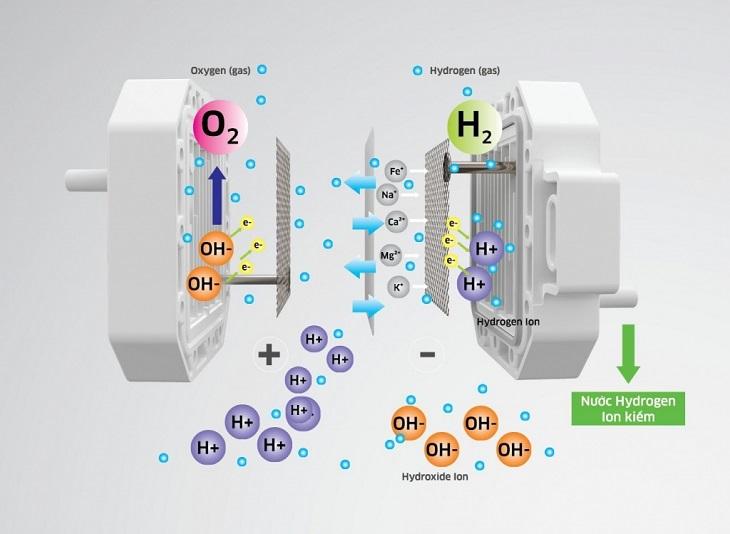 Những bản cực điện giúp tạo ra các mức nước khác nhau