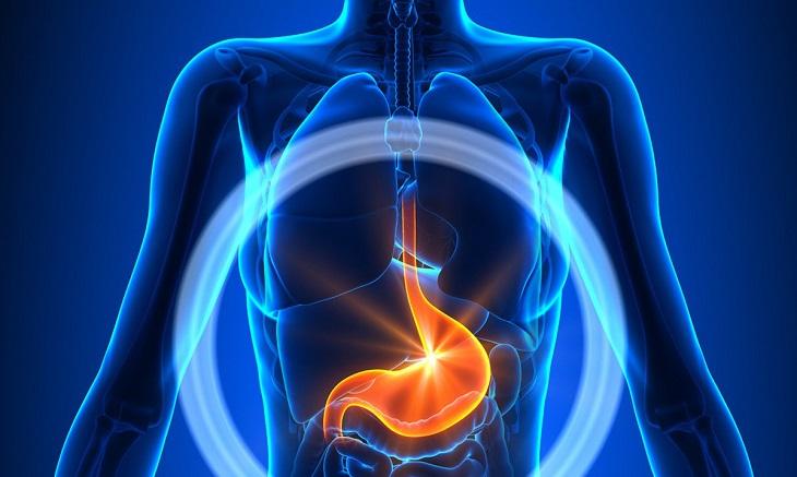 Nước ion kiềm có thực sự tốt cho dạ dày?