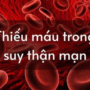 Thiếu máu trong suy thận mạn