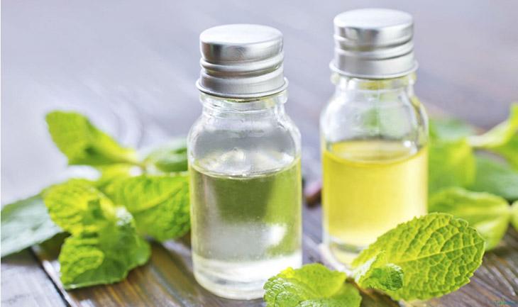 Thành phần menthol trong tinh dầu bạc hà giúp giảm viêm, khử mùi hôi trong khoang miệng