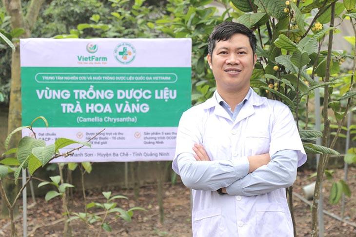 Vùng trồng trà hoa vàng của Trung tâm Vietfarm đạt chuẩn GACP - WHO tại Ba Chẽ - Quảng Ninh