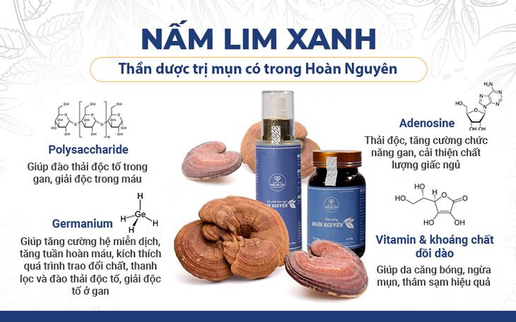 Nấm lim xanh là thành phần thảo dược quan trọng trong Bộ sản phẩm Mụn trứng cá Hoàn Nguyên