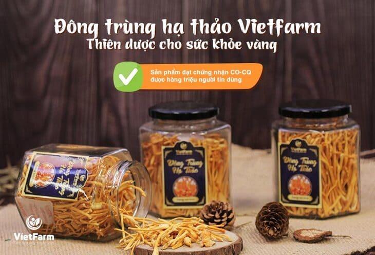 Đông trùng hạ thảo Vietfarm thiết kế sang trọng chất lượng thượng hạng