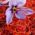 Chuyên gia giải đáp - Nhụy hoa nghệ tây có tốt không?