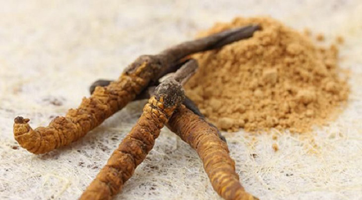 Đông trùng hạ thảo dạng bột