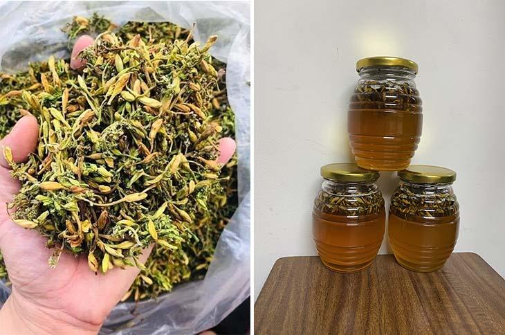Ngâm dược liệu với mật ong cũng là cách dùng hiệu quả