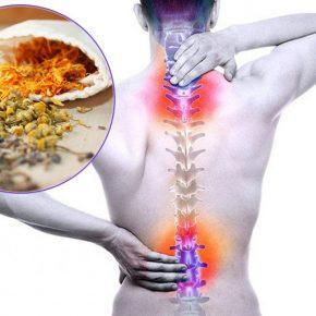 cách chữa đau lưng dân gian