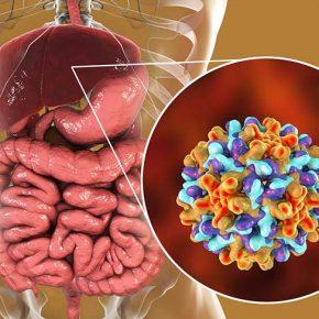 Viêm gan B là 1 trong 5 loại viêm gan hình thành do virus HBV