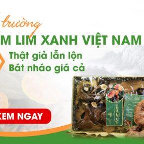 """""""Ma trận"""" thị trường nấm lim xanh Việt Nam, nhập nhằng nguồn gốc, hỗn loạn giá cả"""