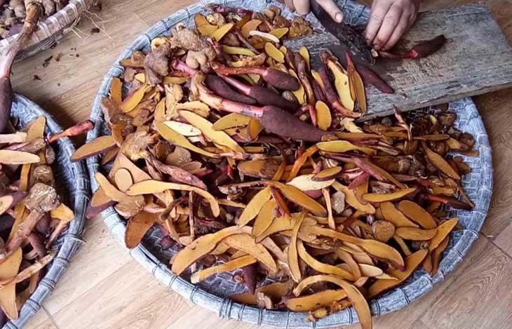 Thành phần của nấm ngọc cẩu có chứa rất nhiều dưỡng chất tốt cho sức khỏe