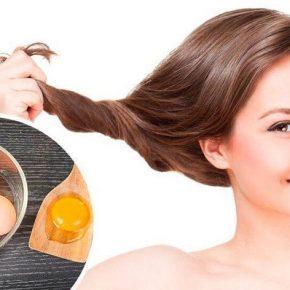 Tác dụng của trứng gà trong việc chăm sóc tóc
